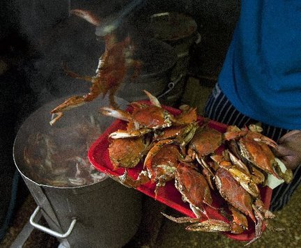 how to clean fresh crab before cooking
